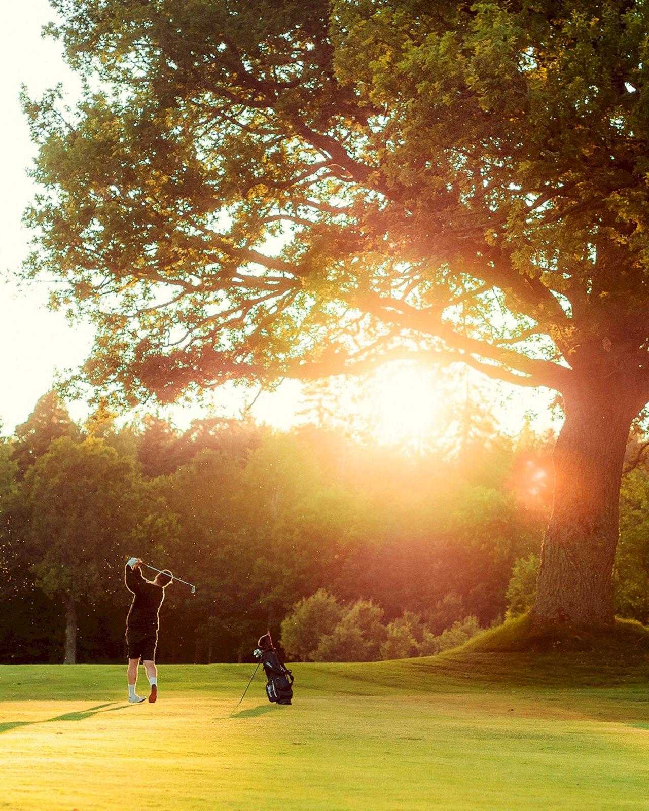 Golfaaja auringonlaskussa Ruissalon Aura Golfin viheriöllä.