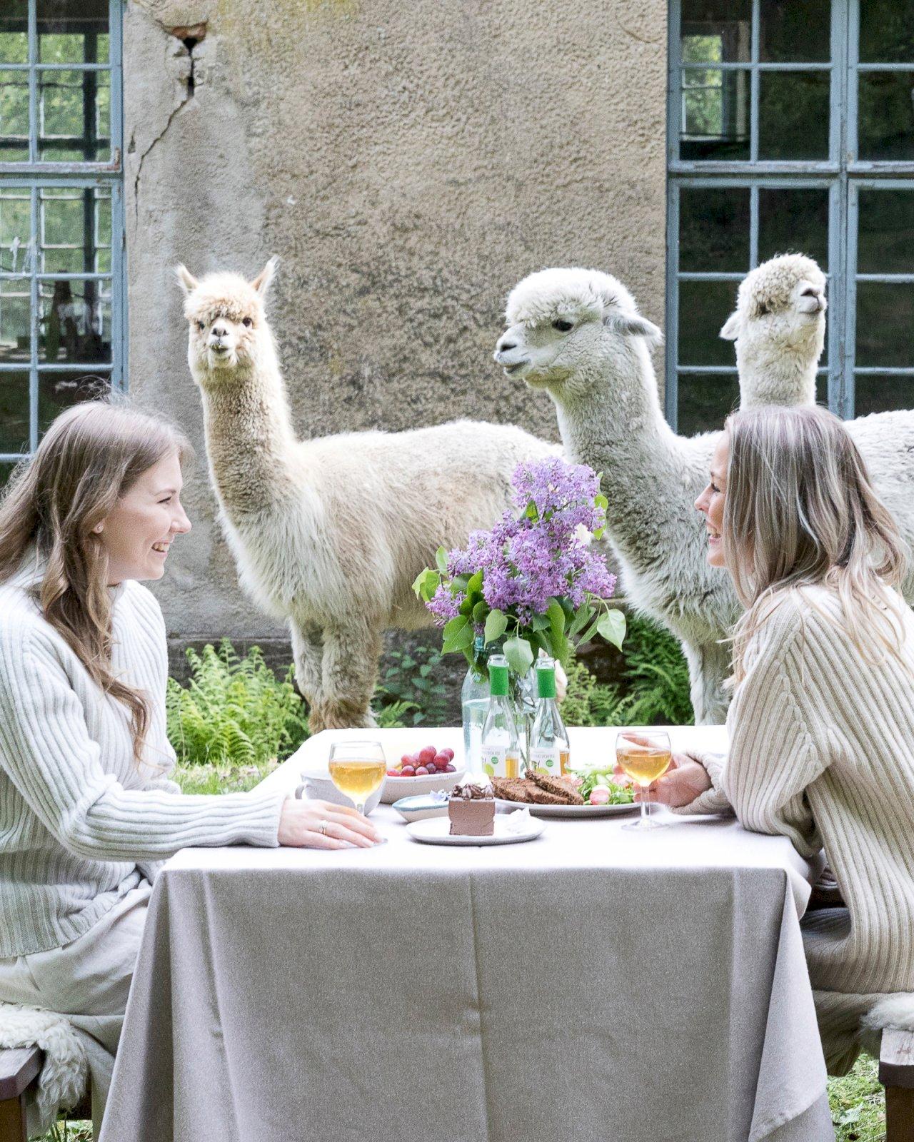 Kaksi naista ruokailee Mathildedalin ruukkikylän pihalla alpakoiden vieressä.