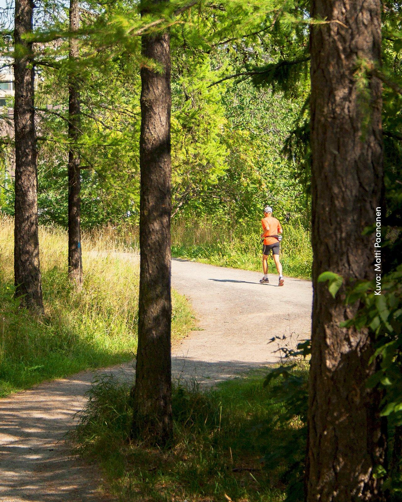 Mies juoksee Karikon lenkkiä Turun Urheilupuistossa.